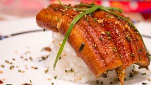 Unagi auf Reis